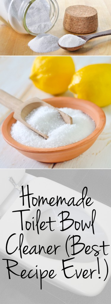 Toilet Bowl Cleaner {Best Recipe Ever