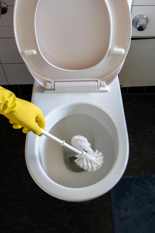 toilet Bathroom peeing why potty