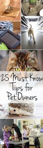 25-must-know-tips-for-pet-owners-1