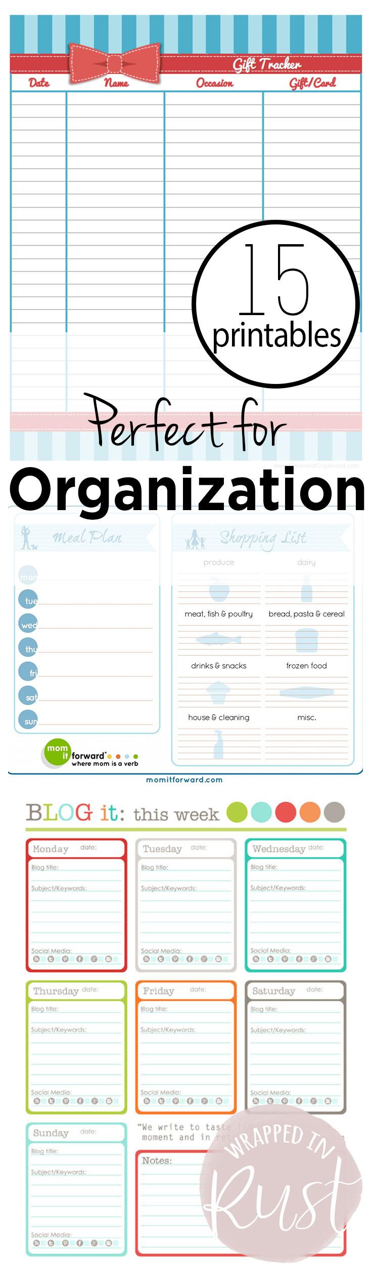 Organization, Organization Printables, Printables for Organization, Organization 101, Free Printables, Cheap Printables, Organization Ideas for Less, Home Organization Ideas, Home Organization Tips and Tricks, Popular Pin