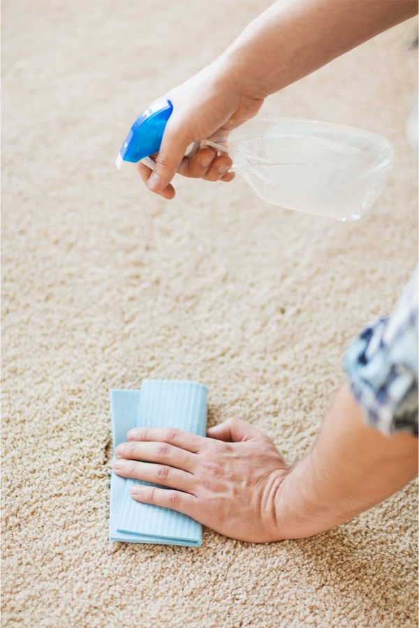 Spilled Milk on Carpet | clean | hacks | milk | cleaning hacks | clean carpets | carpets | how to